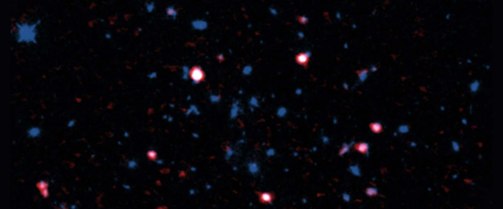 Hot cluster wind robs galaxies of stellar building material