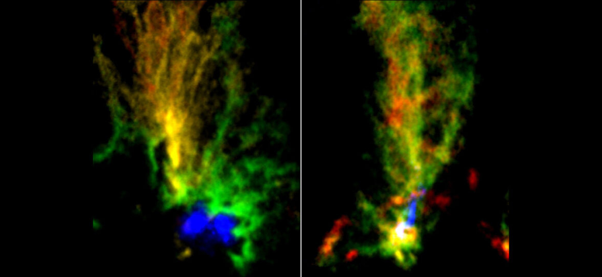 Star-spawning 'peacock clouds' hint at galaxy interaction